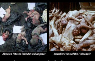 The Abortion Holocaust - The Nazis did this too